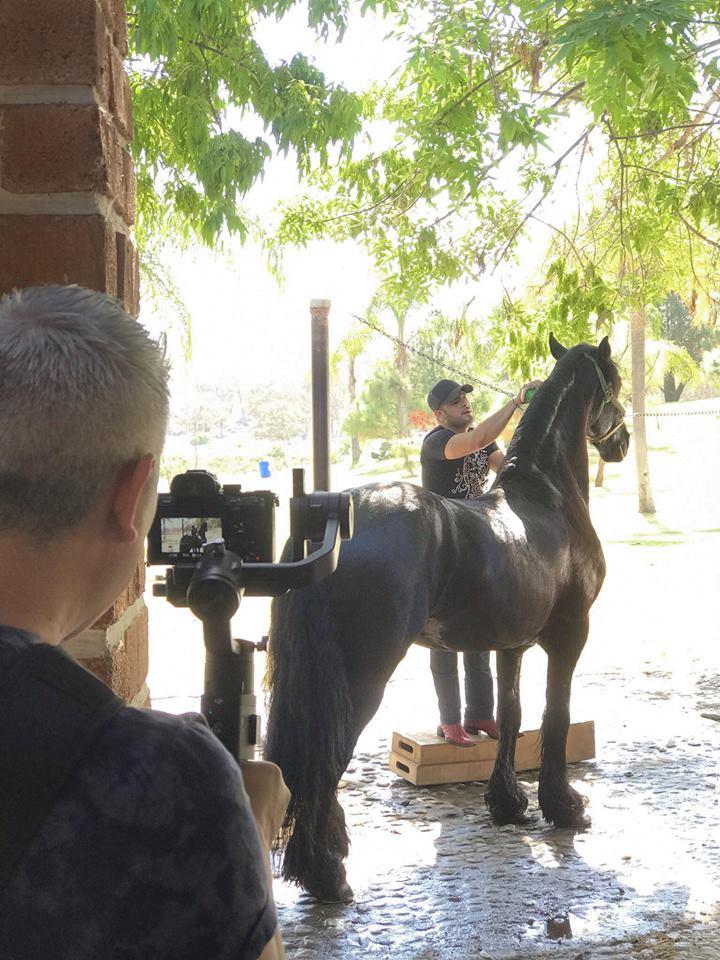 El Gallo Elizalde con caballo